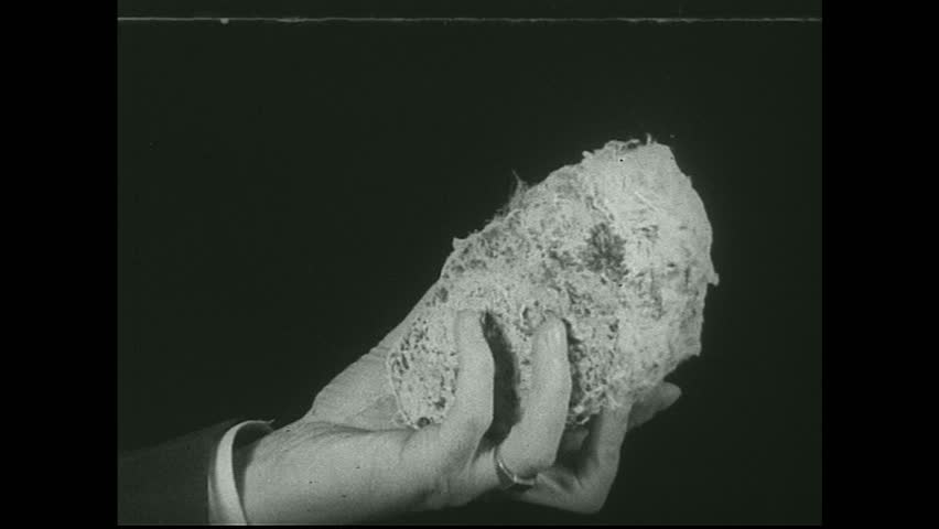 UNITED STATES 1930s - Hand holds rock and pulls out asbestos fibers.