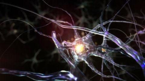 Journey through a neuron cell network inside the brain. Blue. Loopable. Flying across a neuronal network, electric impulses passes by it. Synapse. More options in my portfolio.