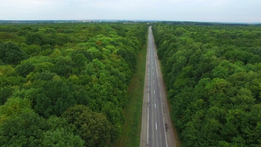 Aerial: flight over road in wood.