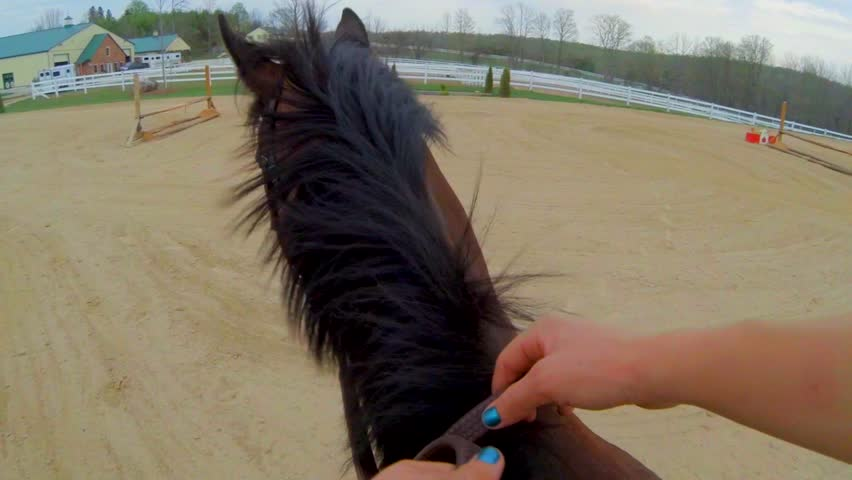 First Person View of Riding a Horse | Shutterstock HD Video #11890520