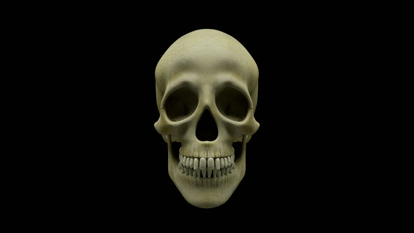 Talking human skull + alpha layer | Shutterstock HD Video #11967023