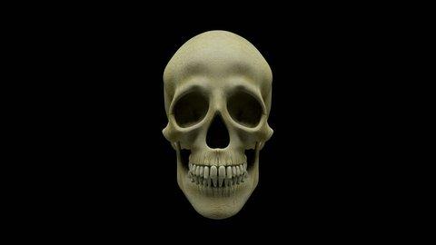 Talking human skull + alpha layer