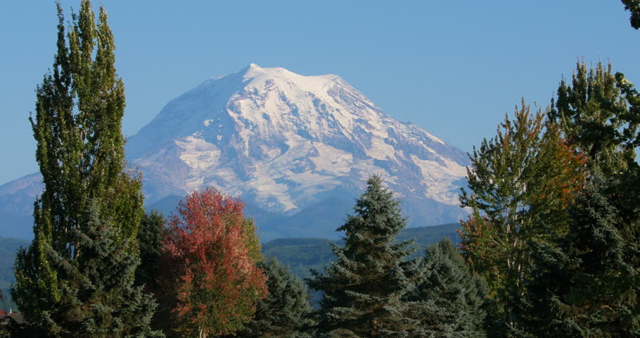 MT Rainier snowcapped peak with trees in the foreground. Mount Rainier view from Orting, WA September 27, 2015
