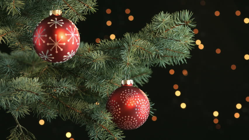 Dark Christmas.Decorated Branch Od A Christmas Stock Footage Video 100 Royalty Free 12489983 Shutterstock