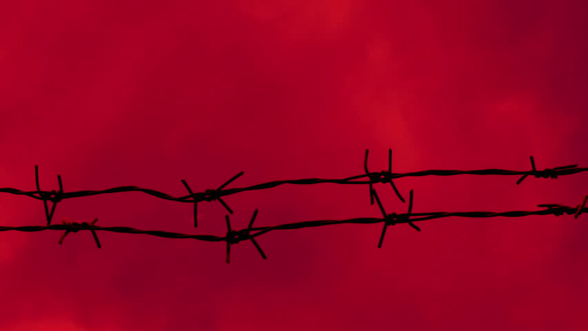 Barbed Wire Background