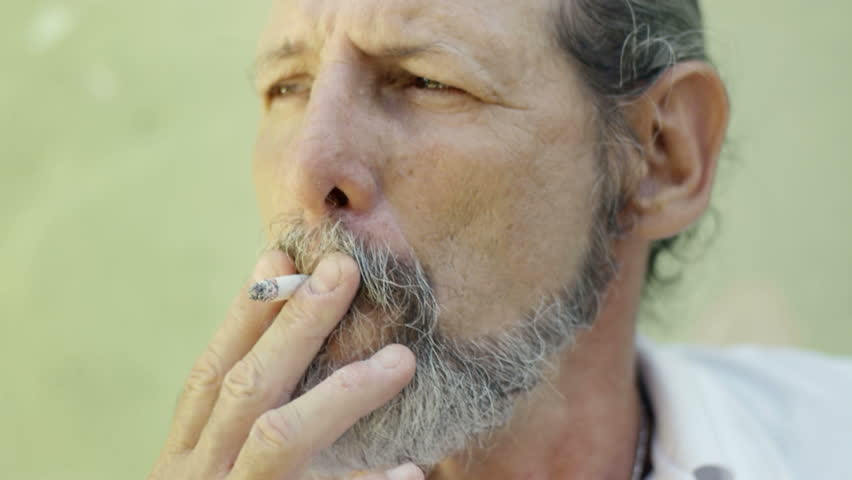 TERRA: Mature Smoking Tubes