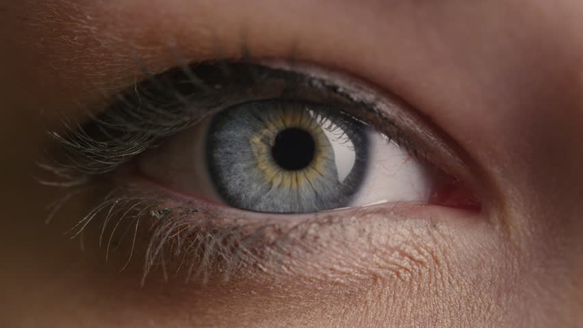 Close-up shot of a woman opening her blue eyes with light day make-up and focusing them. Shot on RED Cinema Camera in 4K (UHD). #12698813