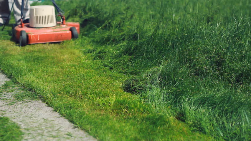 cut grass This faq provides tips for cutting grass properly and is geared to newbies included is information on lawn care and the best and worst times to mow.