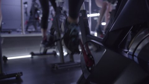 Group of adult women spinning class exercise in gym