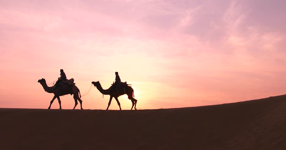 Guided <b>Camel</b> Trek - Sand Dunes &amp; Eucalyptus Forest - Agadir | Expedia