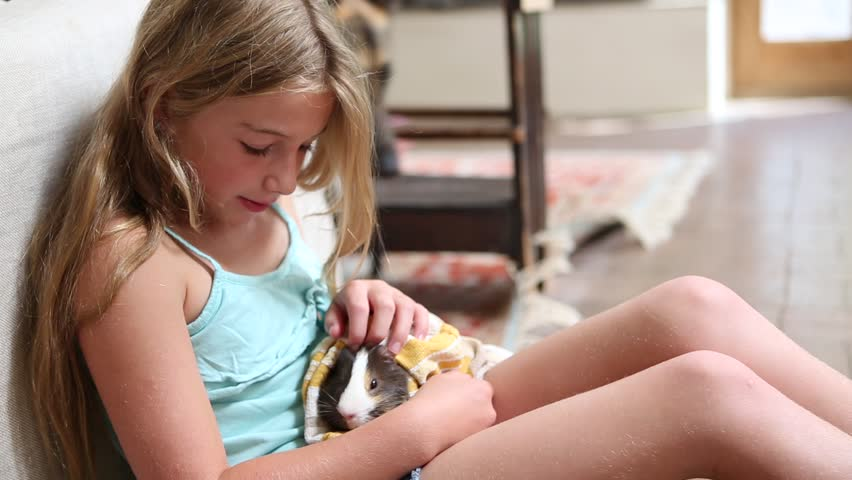 Pre-Teen Girl Holding Pet Hamster Stock Footage Video -5684