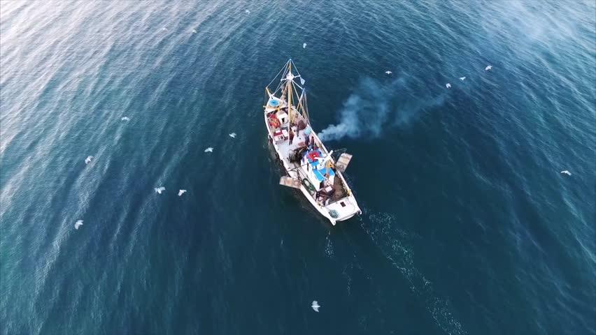 Fishing boat in the sea | Shutterstock HD Video #13725833
