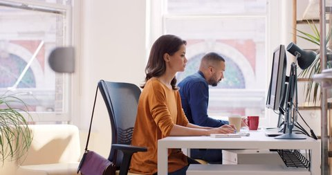 Mixed race team of young business people working in open plan office desk rows of computers in shared workspace bright natural light