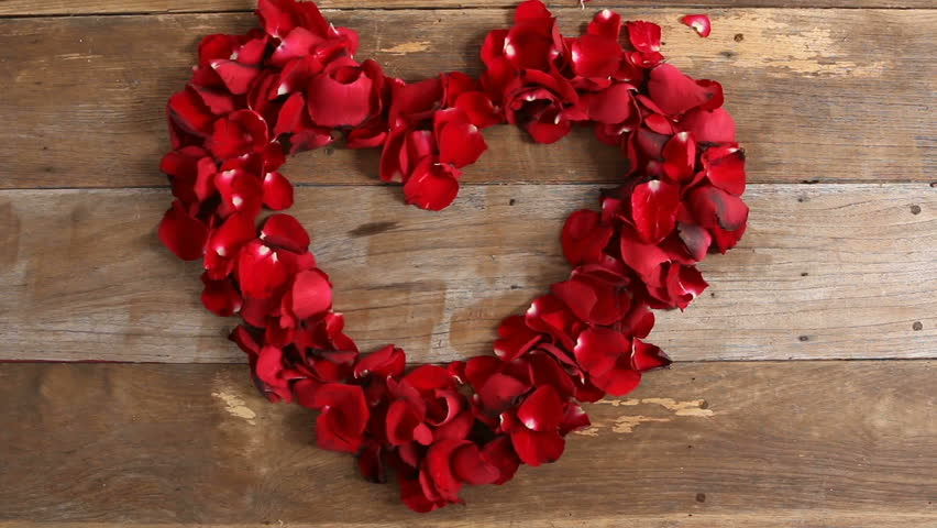 Wind Blows Red Rose Petals, Caption Word Love On Wood