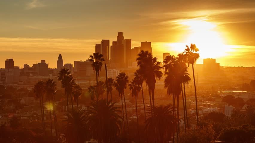 Beautiful sunset to night transition over city of Los Angeles downtown skyline with palm trees in foreground. 4K UHD timelapse. | Shutterstock HD Video #14134718