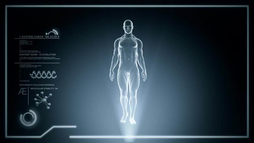Human Anatomy Full Body WALKING with Digital Touch Screen and Red x-ray Scan in 3D - LOOP | Shutterstock HD Video #14229626