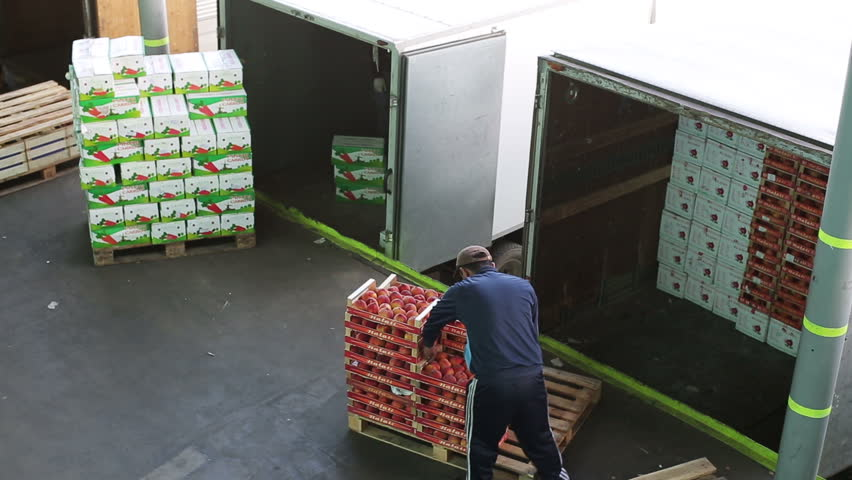 Russia, Novosibirsk - July 25, 2015: Worker of transport company load boxes of goods in trailer of truck. Order for carriage for eat. Company import foodstuffs for resale. Boxes with apples. Outdoors