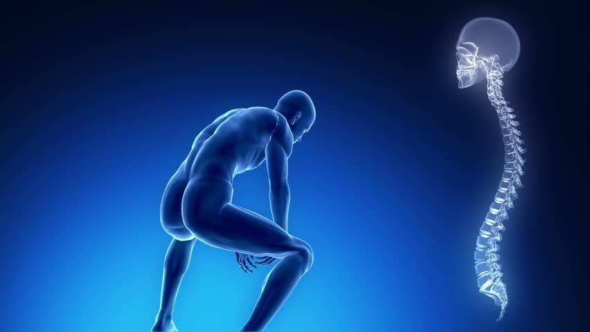 Pain in backbone concept