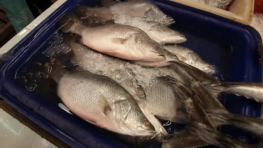 Fish fresh mart | Shutterstock HD Video #14586883