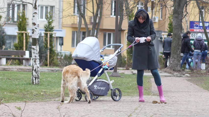 SOFIA, BULGARIA - FEB 14, 2016: Walking with a dog in park woman pick up pet poop in bag and take it away