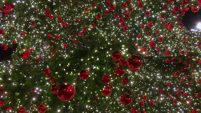 Christmas Tree Lights Background Winter Stock Footage Video 100 Royalty Free 14680543 Shutterstock
