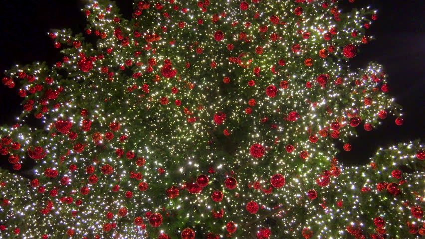3840x2160 4K pan tilt up motion video of green christmas tree with multiple white blinking lights and red balls decoration, as winter merry xmas holiday or new year celebration season background