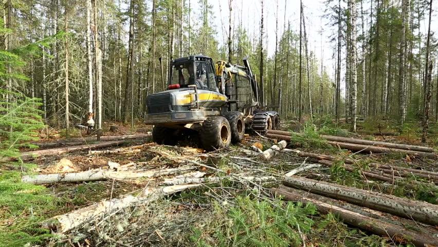logger equipment