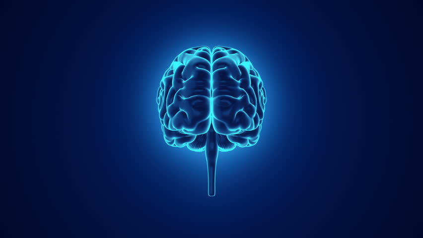 Abstract background with animation of rotation Human brain with glow. Backdrop of science or social technology. Animation of seamless loop. | Shutterstock HD Video #14884963