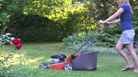 Home garden grass cutting woman mowing with lawn mower near red rose bush plant in yard. Static shot.