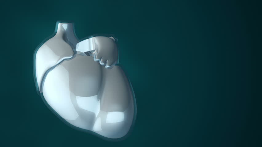 Animation of rotation human heart with glass safety. Movie of health care or science. Animation of seamless loop. | Shutterstock HD Video #14965243