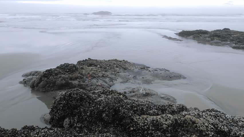 Time lapse of waves washing on Combers Beach in Pacific Rim National Park Reserve on Vancouver Island in British Columbia, Canada.
