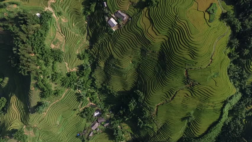 Aerial Video In An Amazing Landscape With Drone Above Rice Terraces A Beautiful