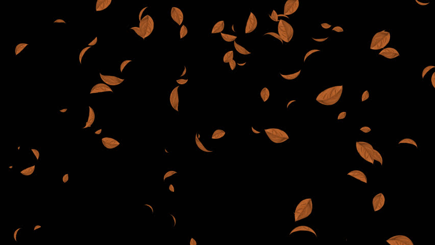 HD Loopable Falling Autumn Leaves Animation