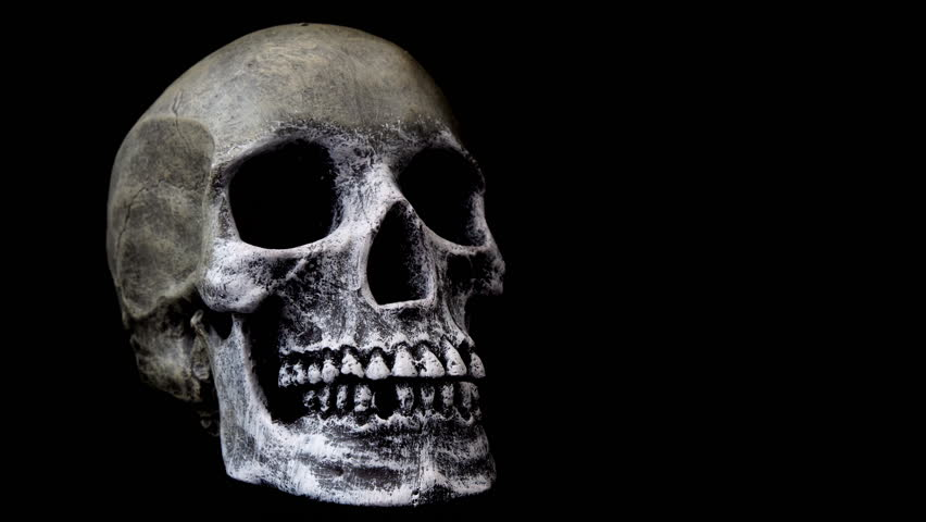Stock Video Of Human Skull On Black Background