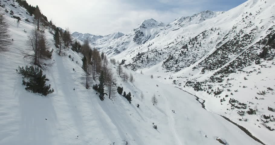 An aerial view in winter over a valley in the winter full of snow, Livigno, Mine's valley, Alp trees, pines and white snow