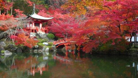 Kyoto, Japan - Nov 24, 2013 : time lpase Daigo-ji temple with colorful maple trees in autumn, Kyoto, Japan