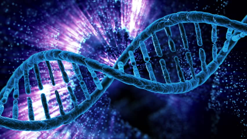 Loop Rotation Of The Dna Stock Footage Video 100 Royalty Free 16008523 Shutterstock