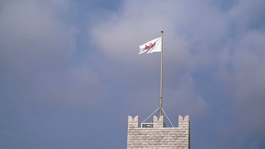 Flag of Monaco waving in the wind with flagpole #16031173
