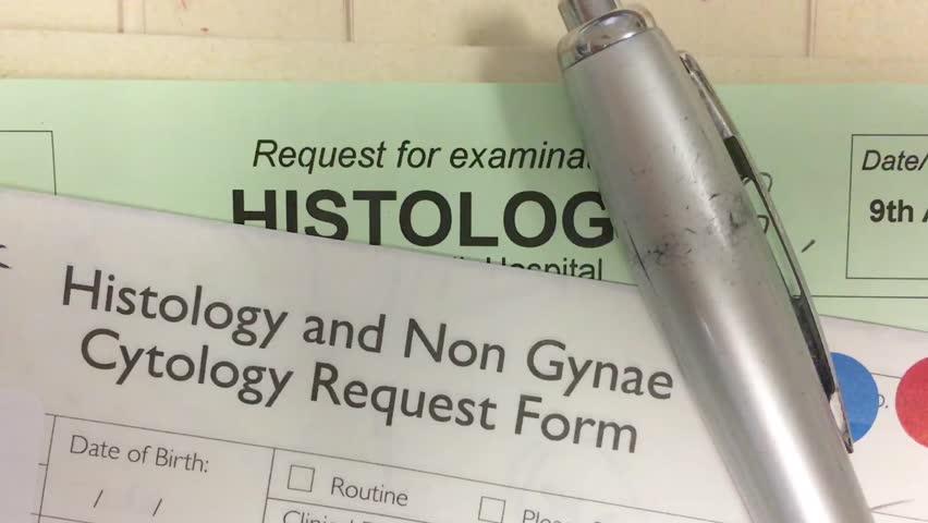 Header of histopathology
