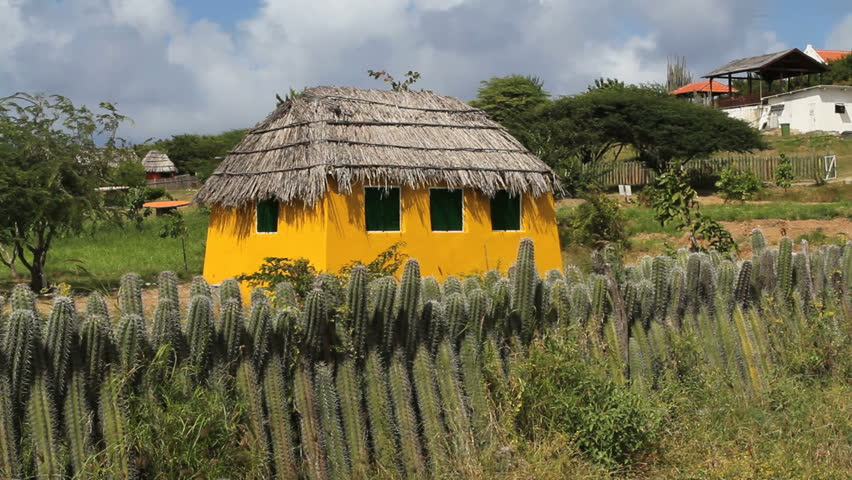 September 2011 - Bonaire - Catus fence and thatched hut