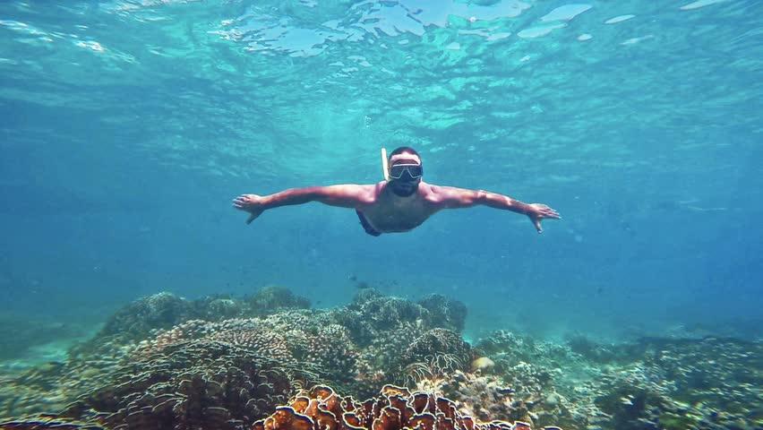 Two Men Diving In Coral Reef. Underwater Scene. Stock