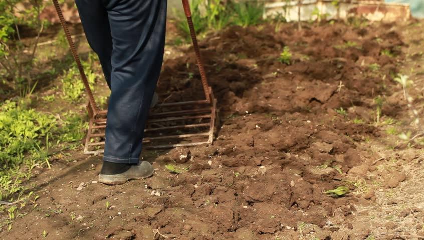 Shovel digging garden miracle | Shutterstock HD Video #16485223