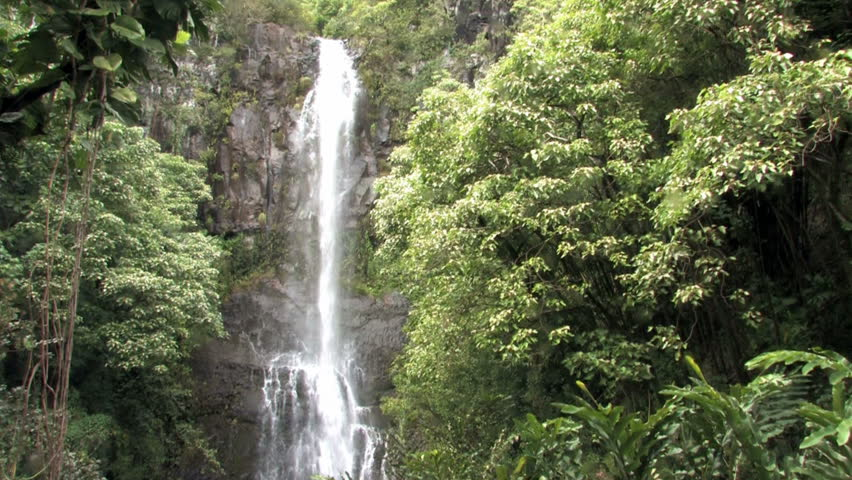 Wailua waterfall in Maui, Hawaii near town of Hana. Rain jungle vegetation. Vines in trees.