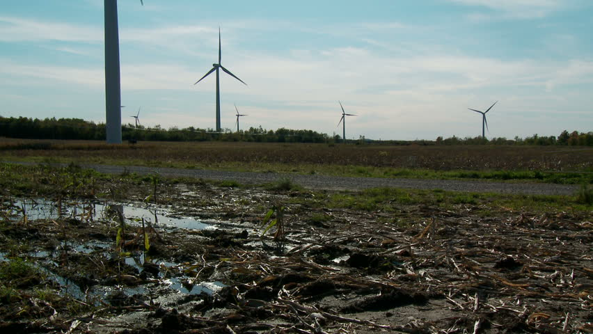 Tilt-up from muddy ground to windmills against sun