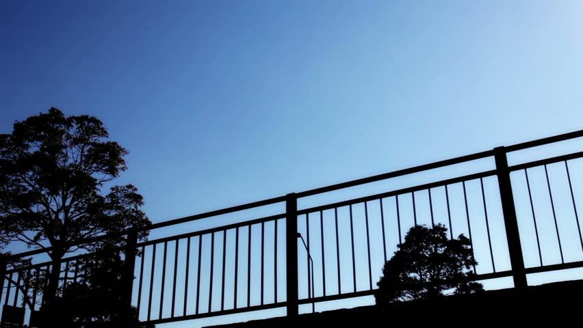 Silhouette, Blue Gradient, People Walking on Street   Shutterstock HD Video #16770253