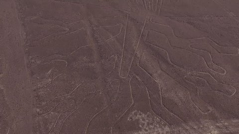 Unesco Heritage: Lines and Geoglyphs of Nazca - Spider