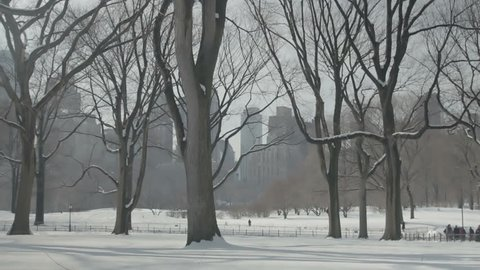 Central Park covered in Snow in New York City. New York City, New York - USA: January, 2016