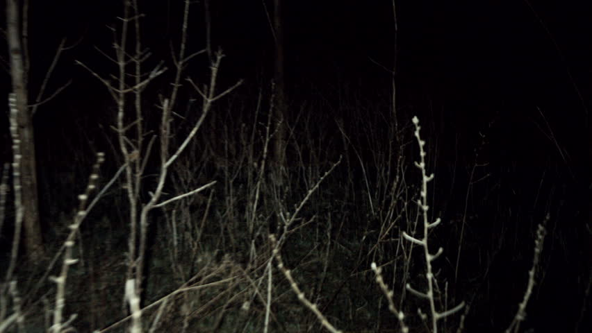 POV shot walking/running through dark spooky forest at night. Escaping from monsters or other scary stuff through the forest, with tree branches all around. Someone is chasing and you're getting away.