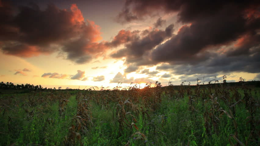 A timelapse sunset near a village in Kenya two hours north of the African city Mombassa.