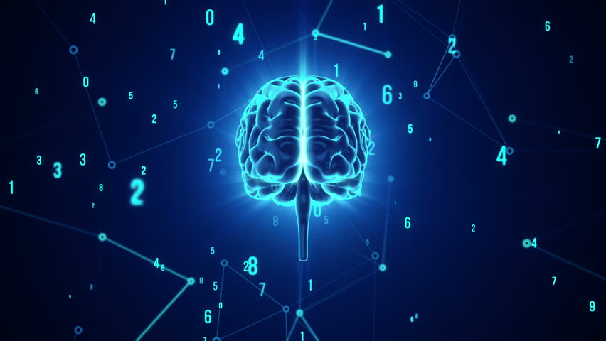Animation of rotation human brain with flying data around. Animation of seamless loop. | Shutterstock HD Video #17343733